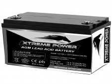AGM Lead Acid Battery AGM12100 : 12V, 100 AH