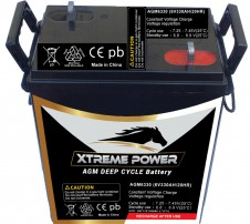 Maintenance Free Battery AGM6330 : 6V, 330 AH